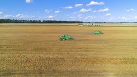 Vista aérea de la máquina segadora en campo de trigo El volar en un círculo a la derecha almacen de video
