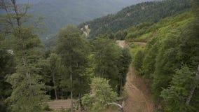 Vista aérea de la montaña hermosa y del bosque hermoso almacen de metraje de vídeo