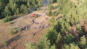 Vista aérea de la reunión organizada de la gente cerca de una hoguera grande en un bosque del pino almacen de video