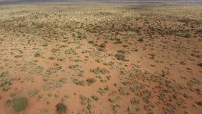 Vista aérea de la sabana africana almacen de video
