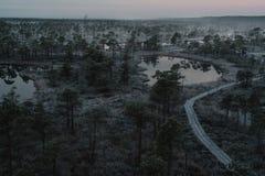 Vista aérea de la trayectoria de madera, camino en pantano en invierno de niebla temprano Foto de archivo libre de regalías