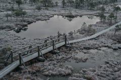Vista aérea de la trayectoria de madera, camino en pantano en mañana temprana del invierno Fotos de archivo libres de regalías