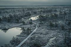 Vista aérea de la trayectoria de madera en pantano en mañana de niebla del invierno temprano Fotos de archivo libres de regalías