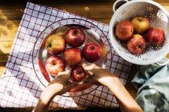 Vista aérea de las manos que lavan manzanas en cuenco imagenes de archivo