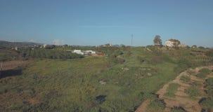 Vista aérea de las yardas y de los campos del vino del verde de Italia metrajes