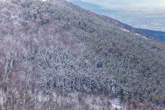 Vista aérea de los árboles cubiertos por la nieve en un bosque, en el lado de la montaña Umbría de Subasio, creando una clase de  Fotos de archivo
