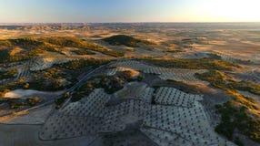 Vista aérea de los campos del ³ n de Chinchà Foto de archivo