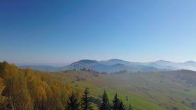 Vista aérea de montañas y del bosque del otoño metrajes