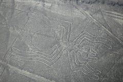 A vista aérea de Nazca alinha - o geoglyph da aranha, Peru foto de stock
