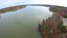 Vista aérea de paisajes y de árboles almacen de metraje de vídeo
