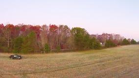 Vista aérea de paisajes y de árboles metrajes