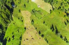 Vista aérea de pilhas do feno Fotos de Stock Royalty Free