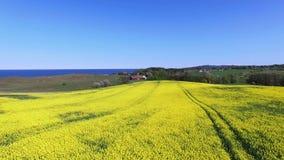 Vista aérea de Suecia del sur almacen de video