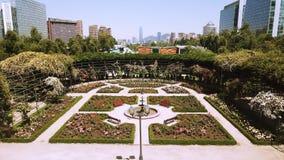 Vista aérea de um jardim de rosas em um parque no Chile Foto de Stock Royalty Free
