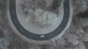 Vista aérea de uma curva da estrada na floresta filme
