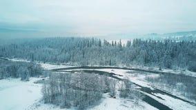 Vista aérea de un bosque nevoso y de un pequeño río en invierno Las montañas de Tatra, Polonia Foto de archivo libre de regalías