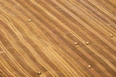Vista aérea de un campo amarillo geométrico con la basura rodada de la paja del trigo foto de archivo libre de regalías