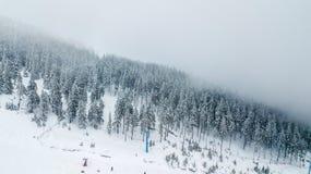 Vista aérea del árbol de navidad nevado en montañas Foto de archivo libre de regalías