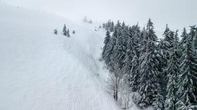 Vista aérea del árbol de navidad nevado en montañas Fotos de archivo libres de regalías