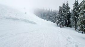 Vista aérea del árbol de navidad nevado en montañas con el camino Foto de archivo libre de regalías