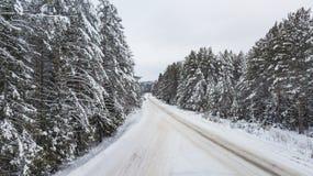 Vista aérea del bosque cubierta con la nieve, camino en invierno fotos de archivo libres de regalías