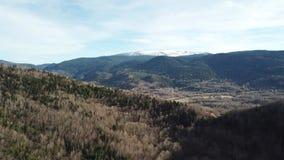 Vista aérea del bosque de pirenáico en Occitanie, Francia almacen de metraje de vídeo