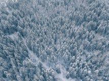 Vista aérea del bosque del invierno cubierta en nieve y helada Foto de archivo
