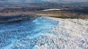 Vista aérea del bosque del invierno cubierto en parte por la nieve y la carretera Hermosa vista desde arriba almacen de video