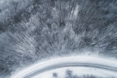 Vista aérea del bosque nevoso con un camino Fotografía de archivo libre de regalías
