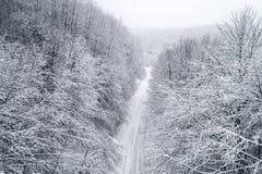 Vista aérea del bosque nevoso con un camino Fotos de archivo