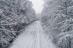 Vista aérea del bosque nevoso con un camino Fotografía de archivo