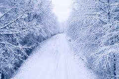 Vista aérea del bosque nevoso con un camino Imagen de archivo