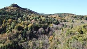 Vista aérea del bosque otoñal en montañas pirenáicas, Francia almacen de video