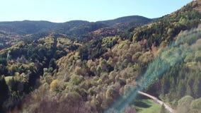 Vista aérea del bosque otoñal en montañas pirenáicas, Francia almacen de metraje de vídeo