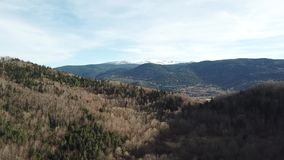 Vista aérea del bosque templado en pirenáico, Francia almacen de metraje de vídeo