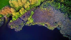 Vista aérea del bosque y del lago Fotografía de archivo libre de regalías