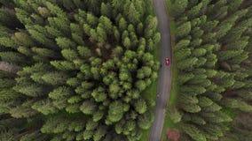 Vista aérea del camino de la montaña de Transalpina metrajes