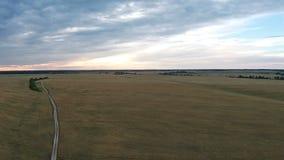 Vista aérea del camino en campo con trigo en la puesta del sol metrajes