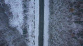Vista aérea del camino vacío que pasa a través del bosque del invierno en ventisca metrajes