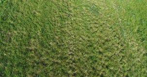 Vista aérea del campo de hierba y de la ruta de la bici almacen de video