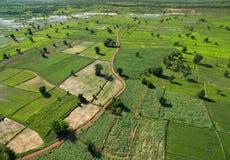 Vista aérea del campo verde grande en el CCB de la naturaleza de la estación de primavera Imagen de archivo libre de regalías