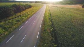 Vista aérea del coche deportivo que conduce en campos almacen de metraje de vídeo