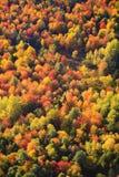 Vista aérea del follaje de otoño en Vermont Foto de archivo libre de regalías