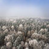Vista aérea del fondo del invierno con un bosque nevado Foto de archivo libre de regalías