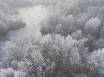 Vista aérea del fondo del invierno con un bosque nevado Imágenes de archivo libres de regalías