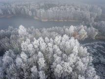 Vista aérea del fondo del invierno con un bosque nevado Imagen de archivo