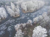 Vista aérea del fondo del invierno con un bosque nevado Fotografía de archivo libre de regalías