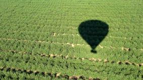 Vista aérea del globo del aire caliente almacen de video