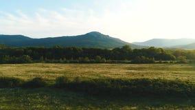 Vista aérea del prado verde hermoso con los árboles y las colinas de la montaña en el fondo en verano contra el cielo nublado azu almacen de video