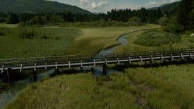 Vista aérea del puente de madera metrajes